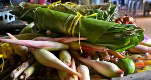 Fun Facts: the leaves (Daun Isip) are used to wrap rice, and the pink stalks (Banana Flower) can be cooked and eaten as a vegetable. Yum!