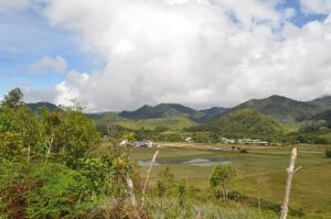 [The beauty of Bario reminds us of the beauty of the world that we are all fighting for - Image credits: Project WHEE!]