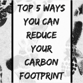 Top 5 Ways You Can Reduce Your Carbon Footprint